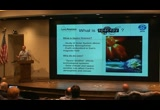 Still frame from: SciPy 2010 - Steven K. Morley - SpacePy - A Python-based library of tools for the space sciences