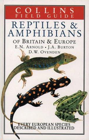 Reptiles and Amphibians of Britain & Europe (Collins Field Guide) by E. N. Arnold, John A. Burton, D. W. Ovenden